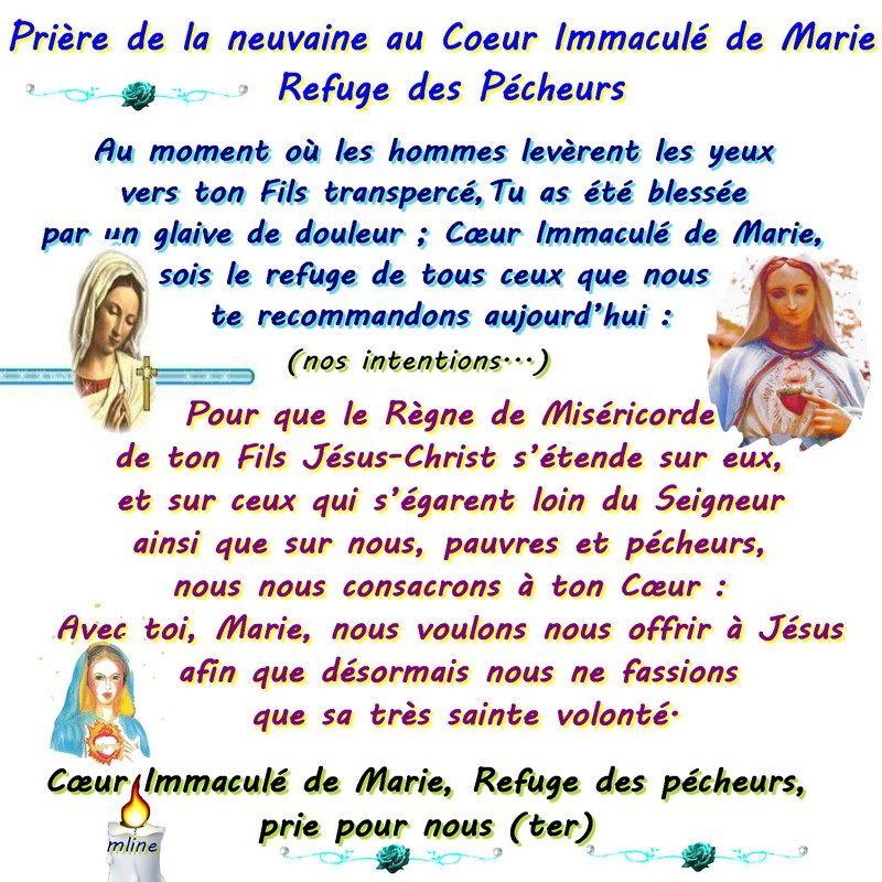 Immacule 1